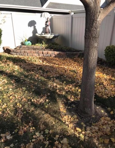before-fall-cleanup-residence-in-ut