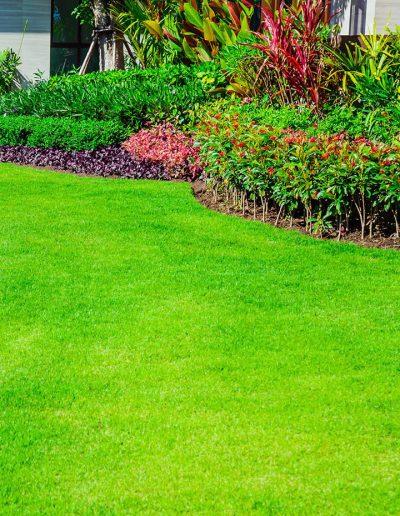 residential-lawn-care-ut