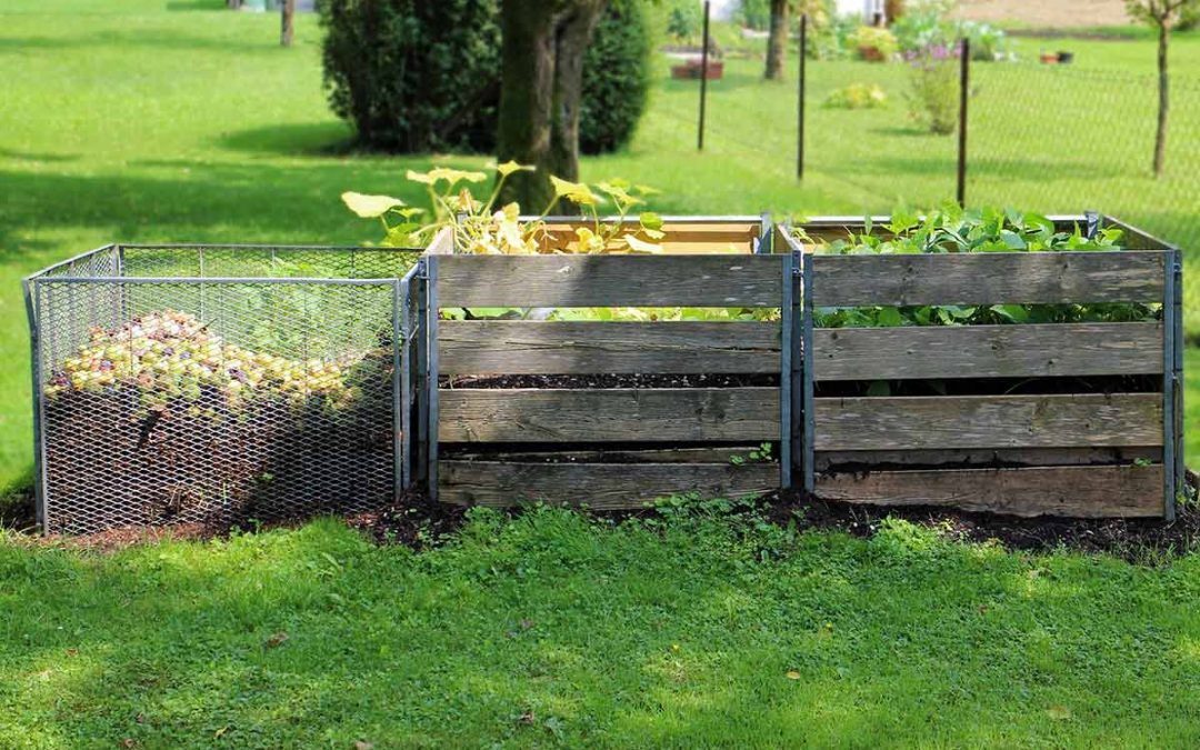 Why you Need to Compost Your Garden.