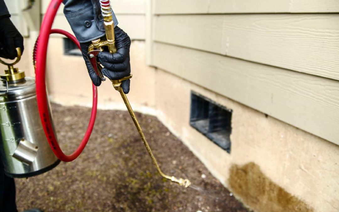 What are the benefits of using pest control services in Utah?